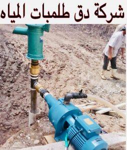 شركة دق طلمبات المياه