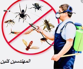 شركة مكافحة حشرات برابغ